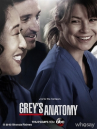 Grey&#39s Anatomy Season 10
